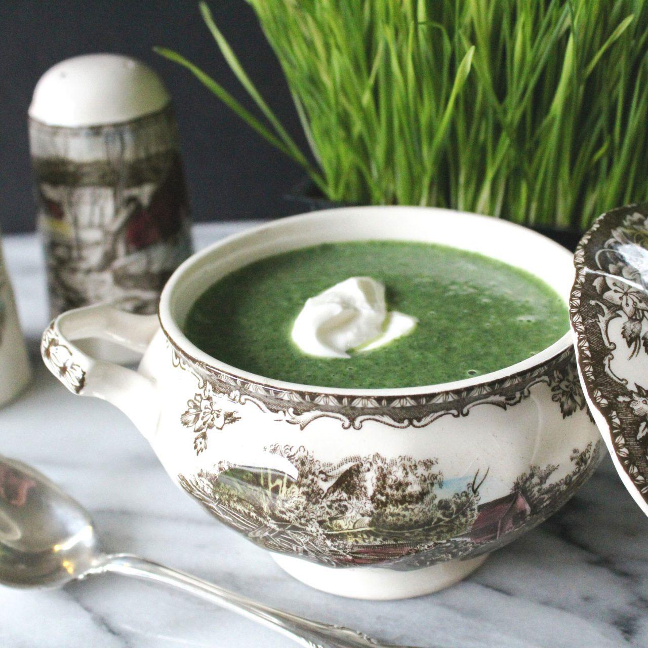 Копривена Крем Супа